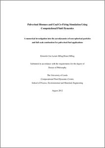 Phd thesis biomass combustion