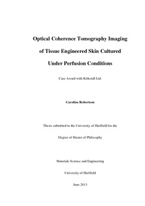 ... monitoring for three-dimensional optical coherence tomography -ORCA