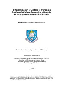 Phd thesis on phytoremediation
