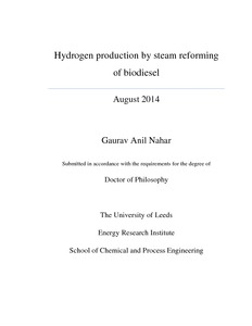thesis biodiesel production